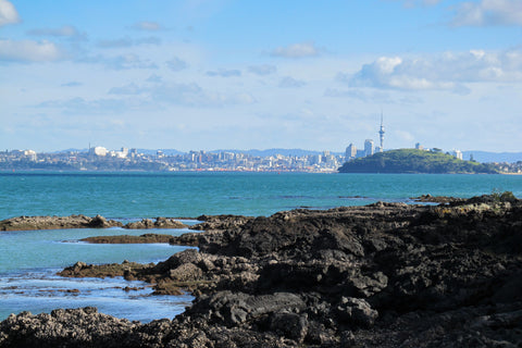 Photo of Auckland from Rangototo Island