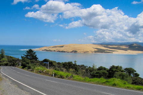 Photo of the Hokianga Harbour mouth