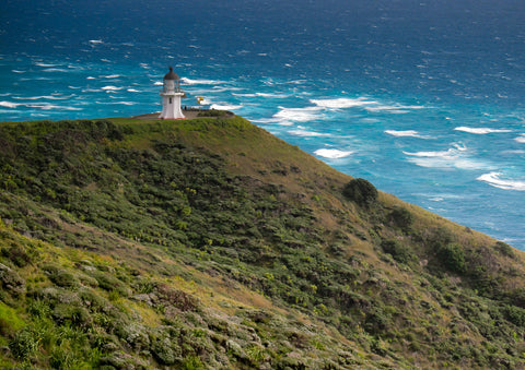 Cape Reinga Photo