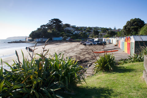 Photo of Titahi Bay Beach
