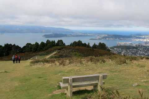 Photo from Mt Kaukau looking down to Wellington