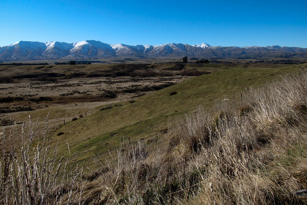 Photo of Hill Country farm near Middlemarch, Central Otago, New Zealand