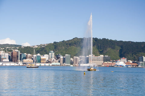 Photo of Wellington Harbour's Water Fountain