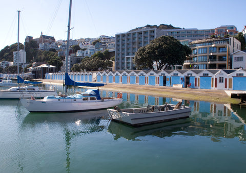 Wellington (Oriental Bay) Yachts and Boat Sheds Photo