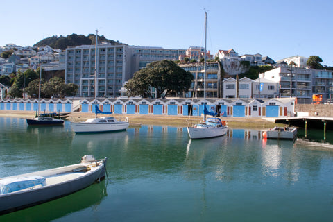 Photo of Oriental Bay Boat Sheds and Mt Victoria