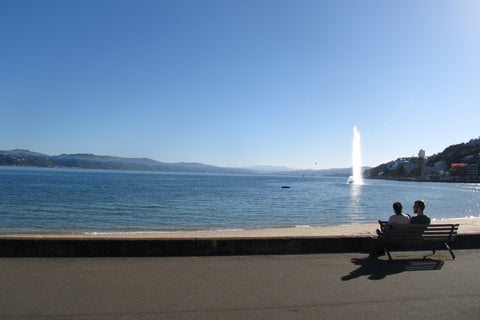 Photo from Oriental Bay, Wellington, New Zealand