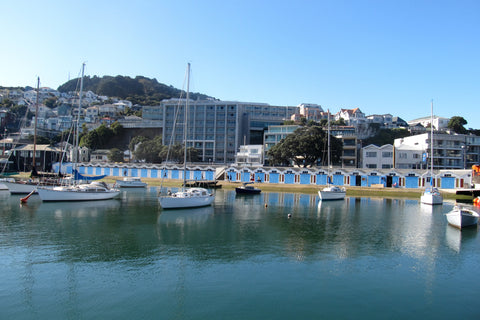 Photo of Oriental Bay Boat Sheds and Yachts