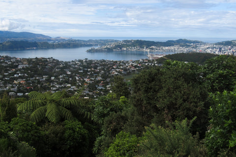 Photo of Wellington, New Zealand