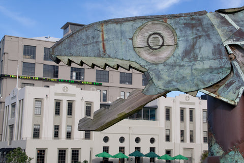 Photo of Wellington's Stock Market Getting Eaten
