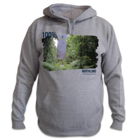 Photo of Grey Northland Hoodie