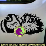 2 GUINEA PIGS Vinyl Decal Sticker