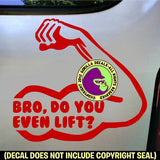 BODYBUILDING - BRO, DO YOU EVEN LIFT? Vinyl Decal Sticker