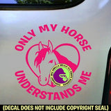 ONLY MY HORSE UNDERSTANDS ME Vinyl Decal Sticker
