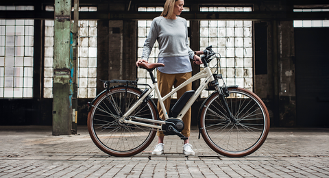 2019 Riese & Müller Cruiser Mixte Collection
