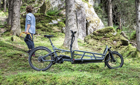 Riese & Müller Load 75 Collection at Fly Rides