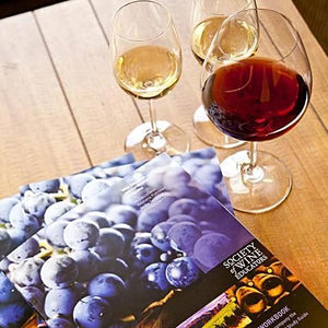 Society of Wine Educator's Certified Specialist of Wine Program at San Francisco Wine School