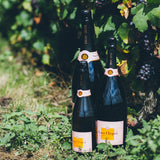Celebrating Clicquot: The Widow and The Wine - Featuring Bestselling Author Dr Tilar Mazzeo