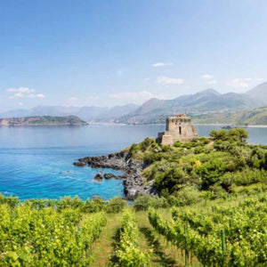 A fortress on a bay with mountains and islands in the distance in Calabria, Italy