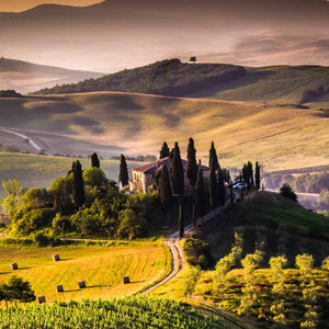 Rolling countryside and vineyards in Toscana, Italy
