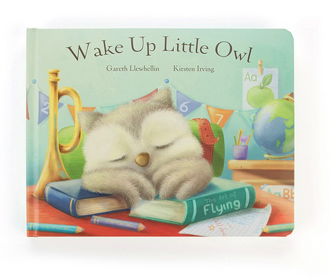 Wake Up Little Owl Book **RETIRED**