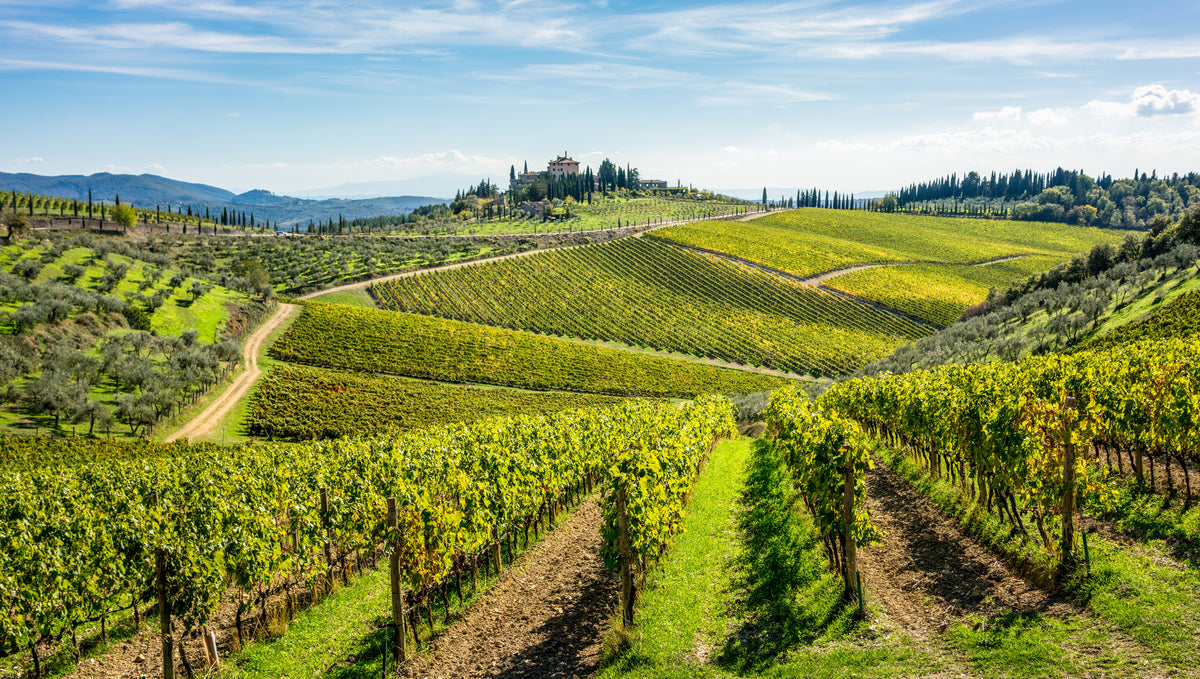 Italian Wines from the Chianti Region | Castello di Poppiano Wines