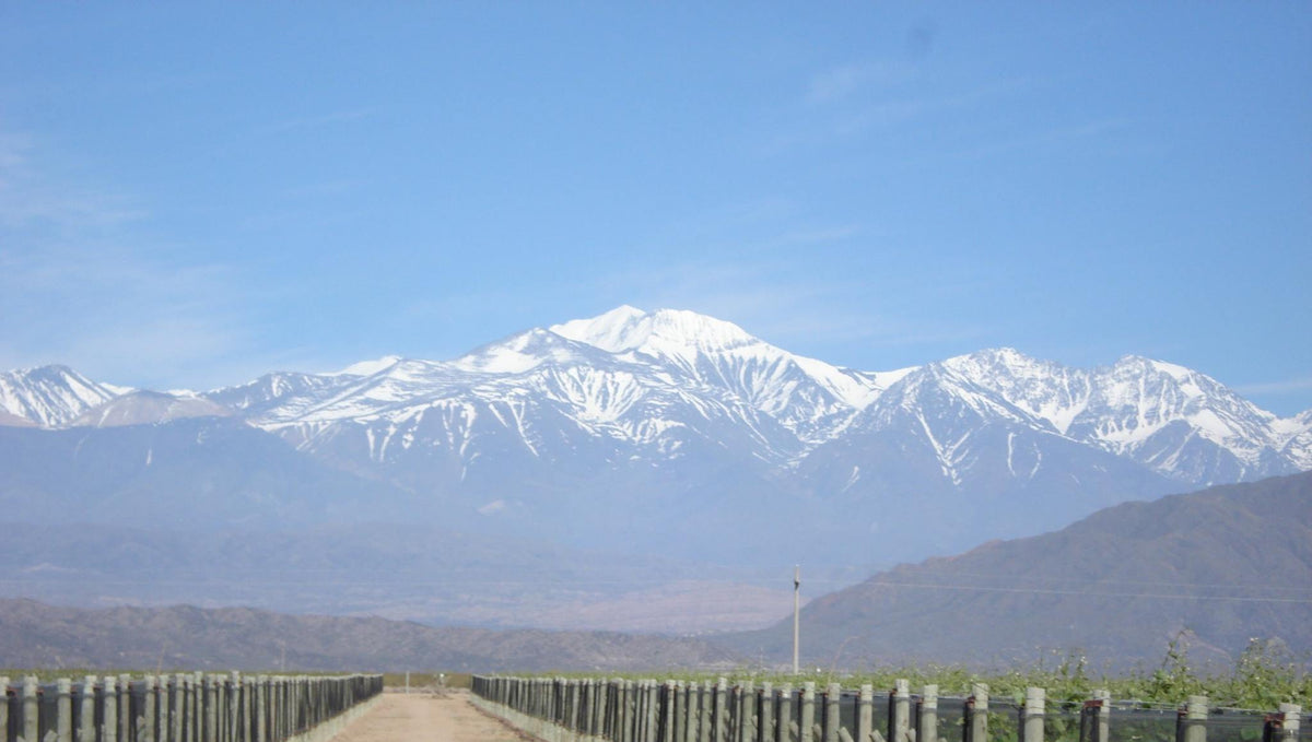 Mendoza, Argentina: History of the Region and the Famiglia Meschini Winery