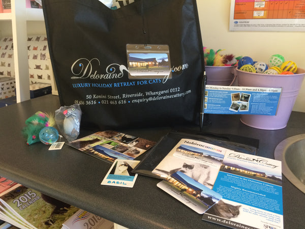 Welcome pack from the Deloraine Cattery