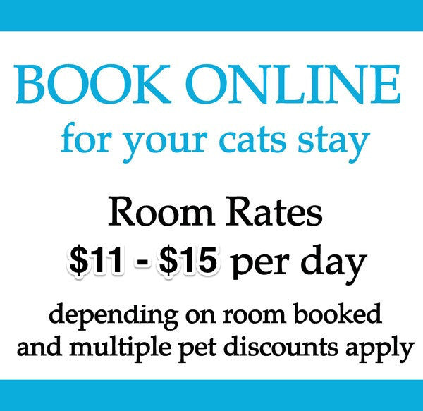 Deloraine Cattery