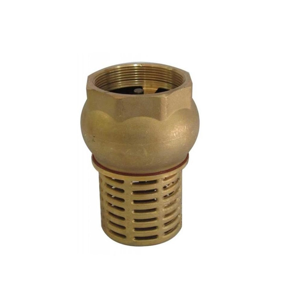 Pump foot valve and strainer brass