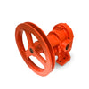 pulley drive gear pumps for molasses