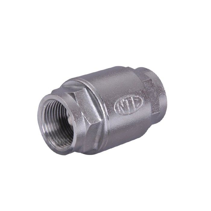 spring check valve stainless bsp threads