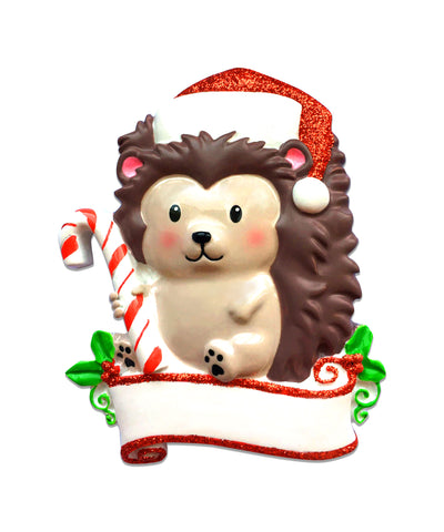OR1586 - Hedgehog Personalized Christmas Ornament