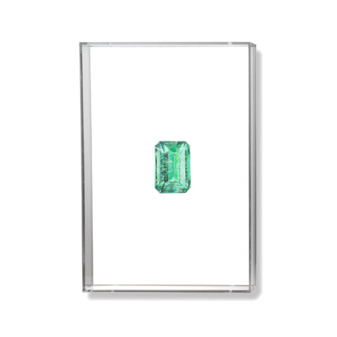 Emerald Gem Illustration by Anna Marrone