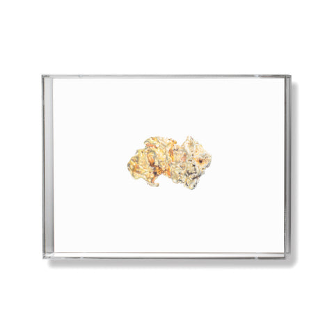 Gold Nugget Illustration by Anna Marrone