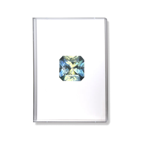 Parti Sapphire Gem Illustration by Anna Marrone