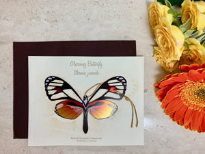 Glasswing butterfly ornament handmade gift notecard thank you get well sympathy