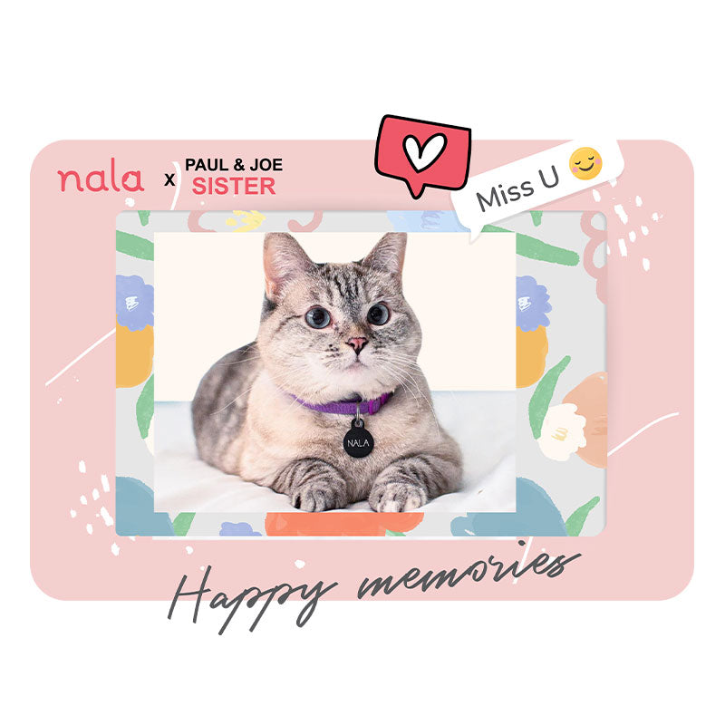 Nala Cat Happy Memories Tee-3