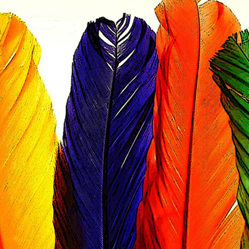 Leaf Designs Multicoloured Feathers Fabric Table Mat - Set of 6