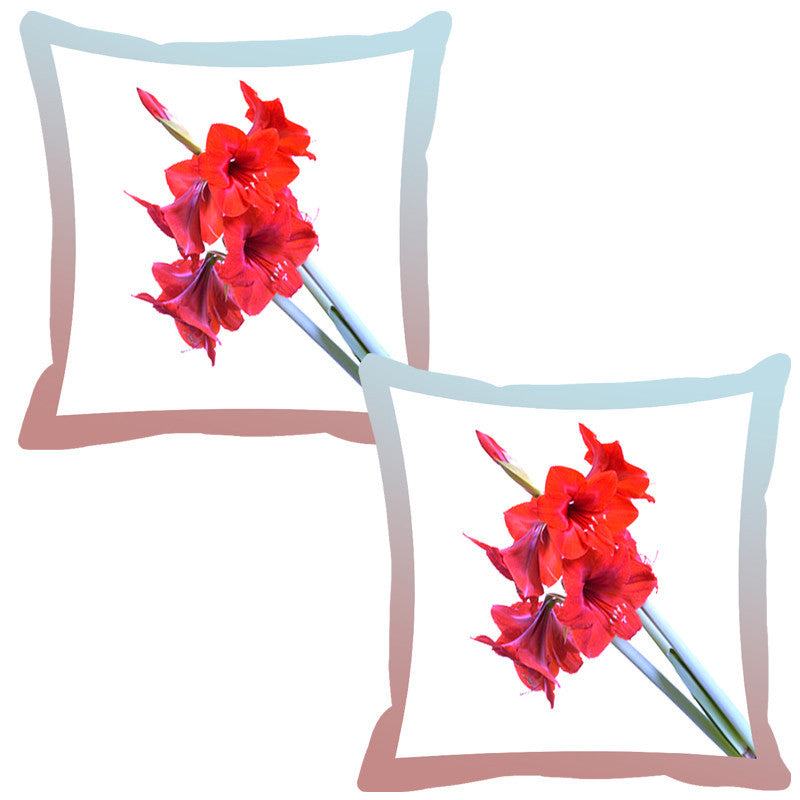 Leaf Designs Frost Shaded Border Floral Cushion Cover - Set Of 2