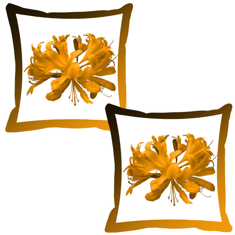 Leaf Designs Brown Shaded Border Floral Cushion Cover - Set Of 2