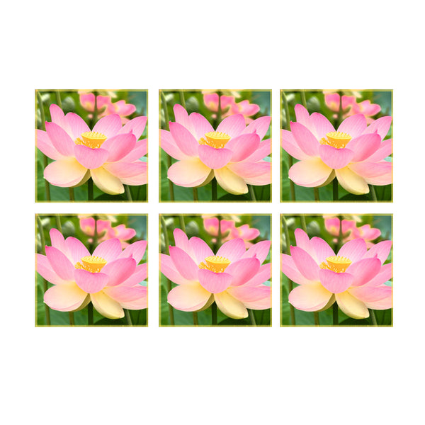 Leaf Designs Pink Floral Coaster - Set Of 6