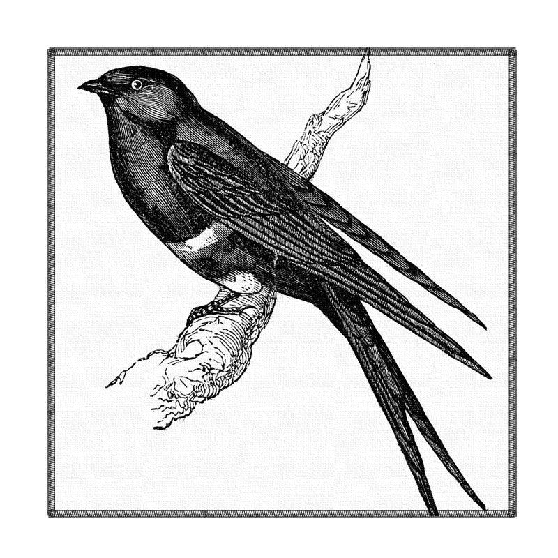 Leaf Designs Black And White Bird Coaster - Set Of 6 ( A )