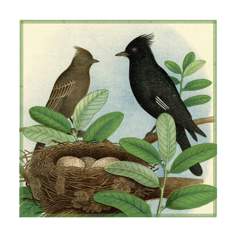 Leaf Designs Black And Brown Bird Coaster - Set Of 6