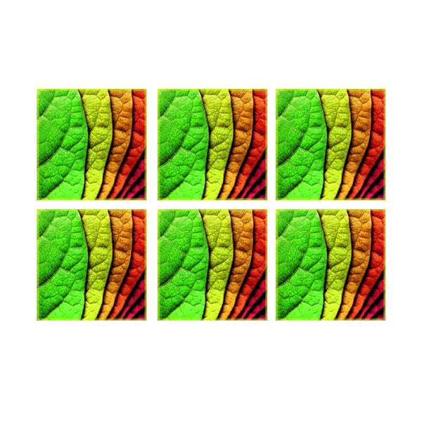 Leaf Designs Multicoloured Coaster - Set Of 6