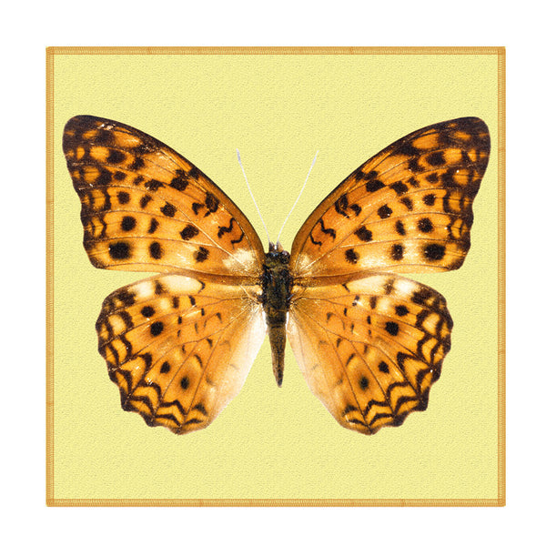 Leaf Designs Mustard Dotted Butterfly Coaster - Set Of 6