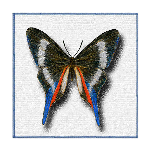 Leaf Designs Multicoloured Butterfly On White Coaster - Set Of 6