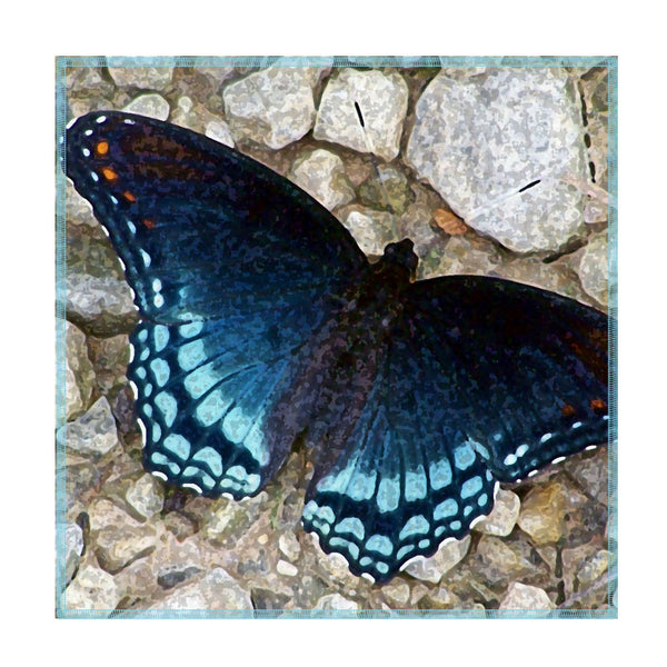Leaf Designs Blue Butterfly On Pebbles Coaster - Set Of 6