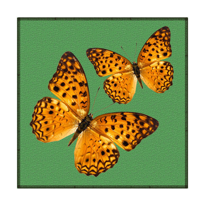 Leaf Designs Green Butterfly Coaster - Set Of 6