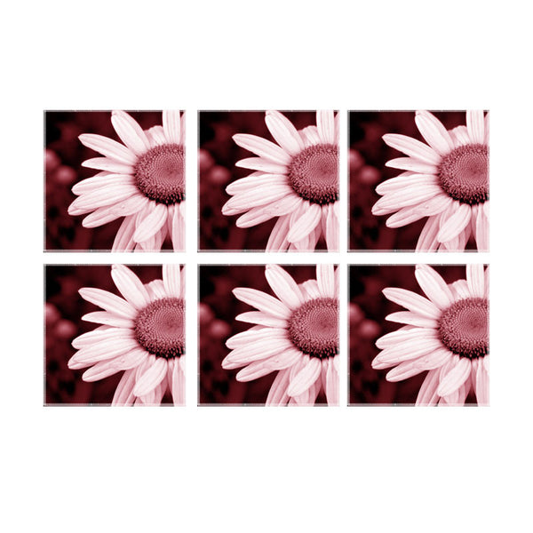 Leaf Designs Pink Daisy Coaster - Set Of 6