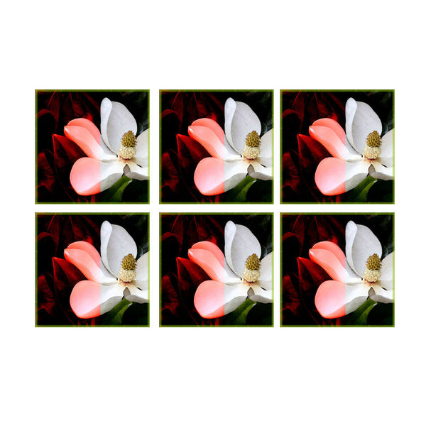 Leaf Designs Dark & Light Floral Coasters - Set Of 6
